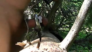 E-stim in forest